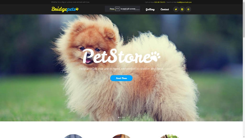Pune Website Designs Pet Store Website Design Demo