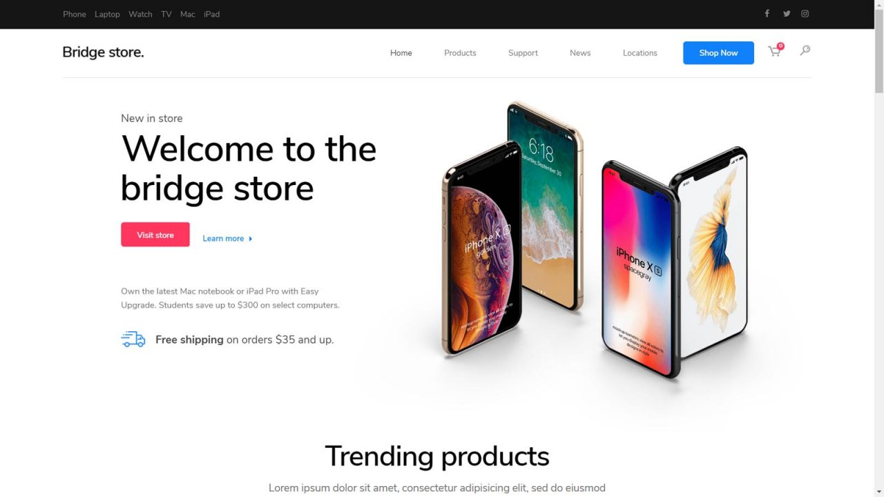 Pune Website Designs - E-Commerce Websites For Business India - Demo Website 10