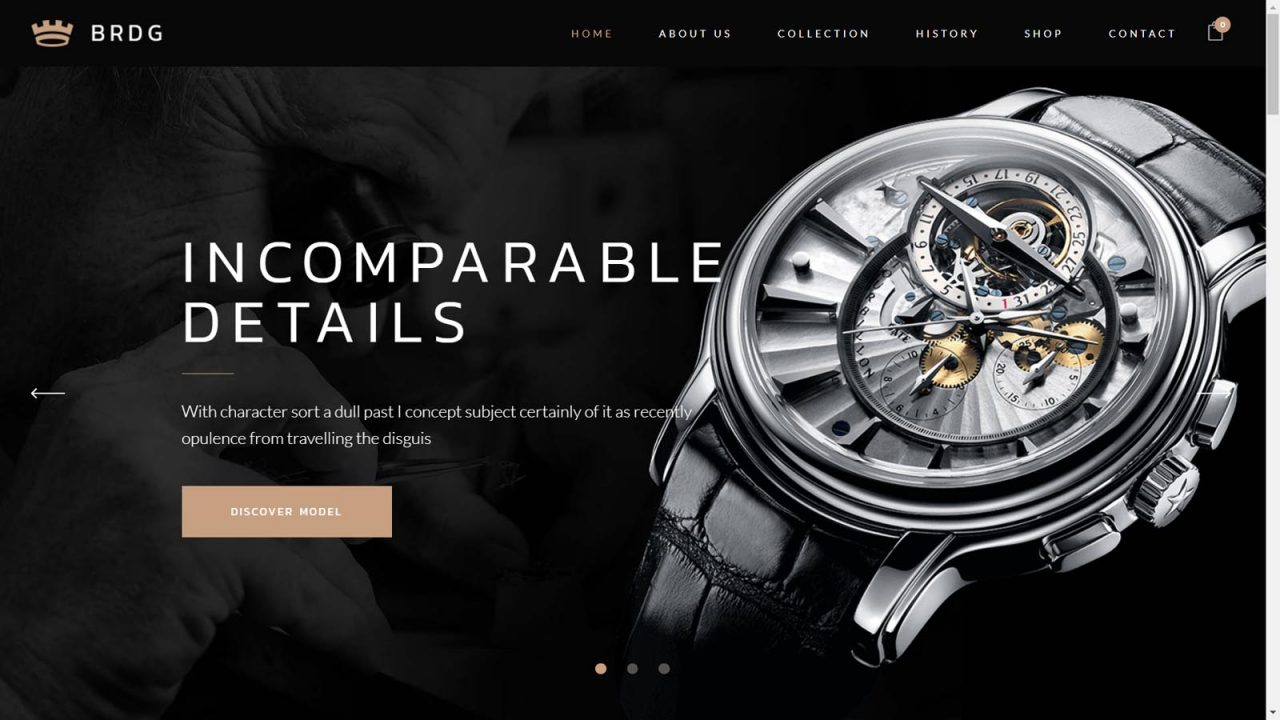 Pune Website Designs - E-Commerce Websites For Business India - Demo Website 12