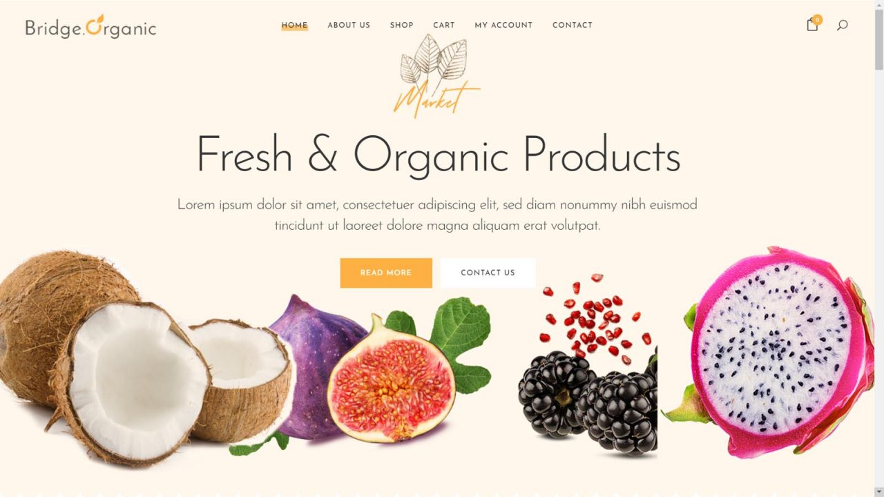 Pune Website Designs - E-Commerce Websites For Business India - Demo Website 19